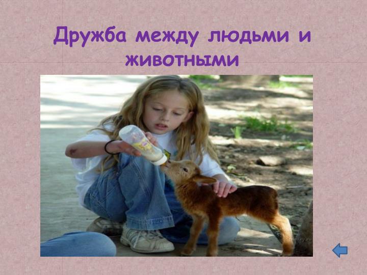 Дружба между людьми и животными
