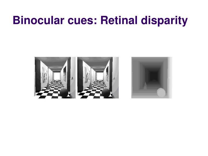 Binocular cues: Retinal disparity