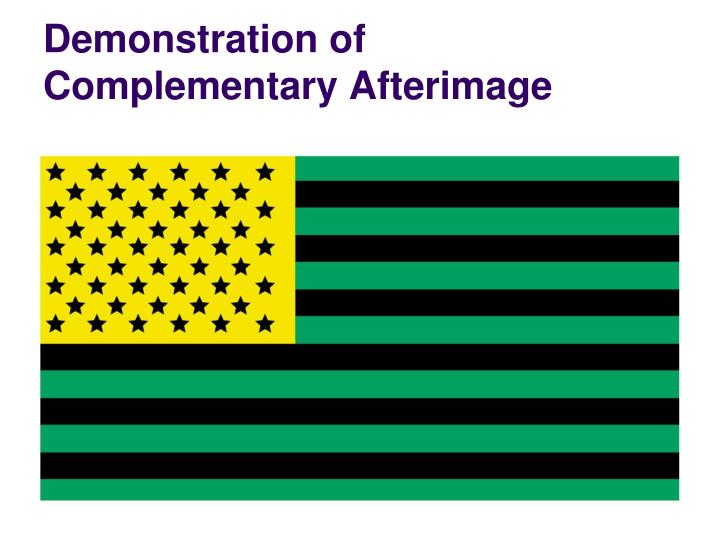 Demonstration of complementary afterimage