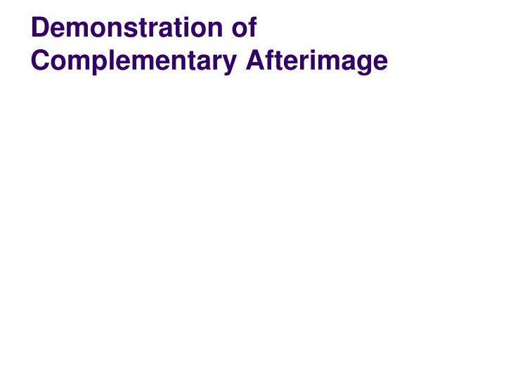 Demonstration of complementary afterimage1