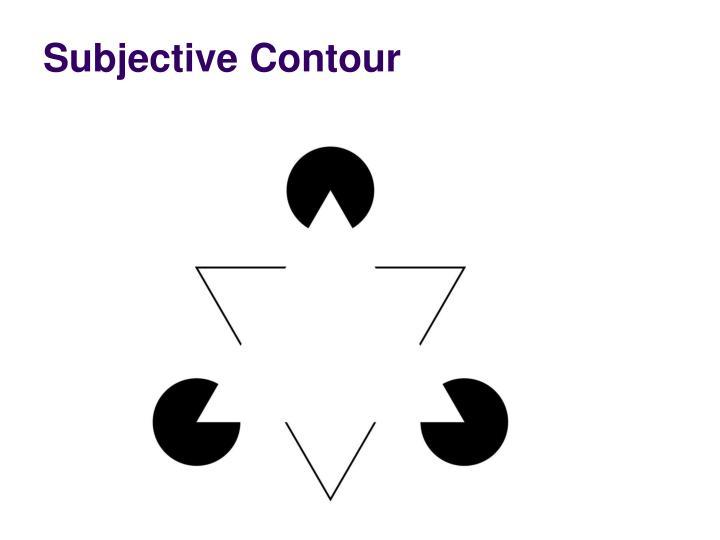 Subjective Contour