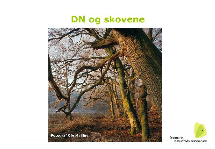 DN og skovene