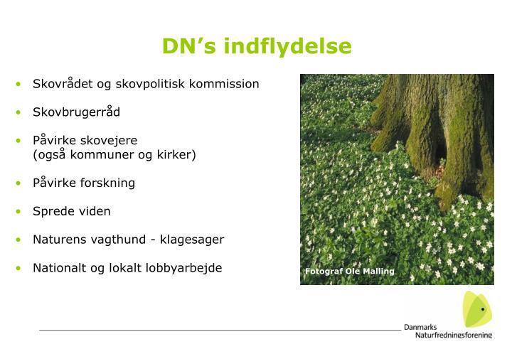 DN's indflydelse