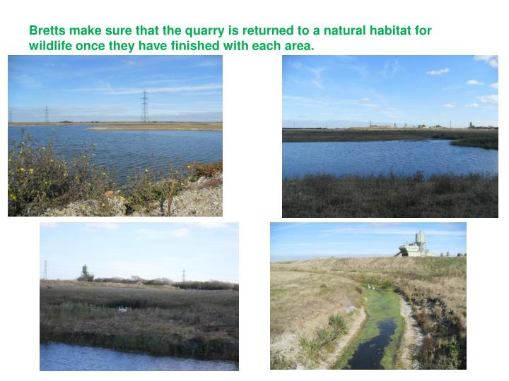 Bretts make sure that the quarry is returned to a natural habitat for wildlife once they have finished with each area.
