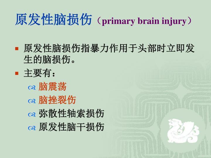 原发性脑损伤