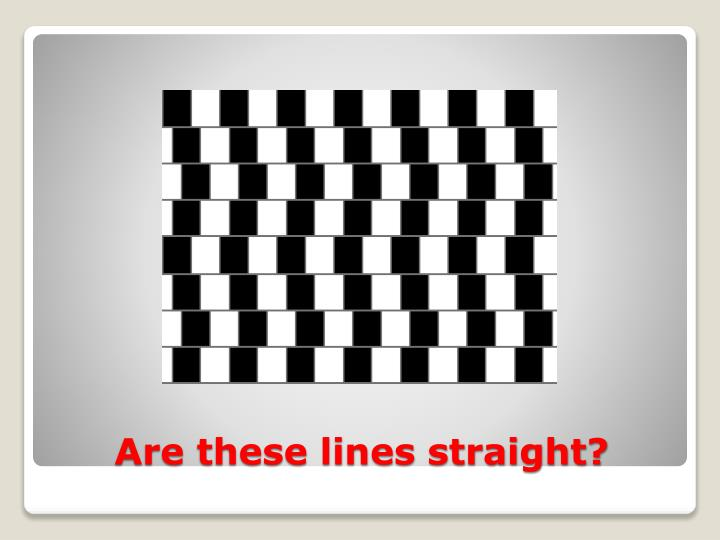 Are these lines straight?