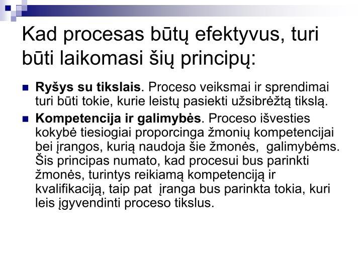 Kad procesas būtų efektyvus, turi būti laikomasi šių principų: