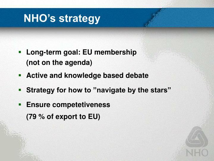 Nho s strategy