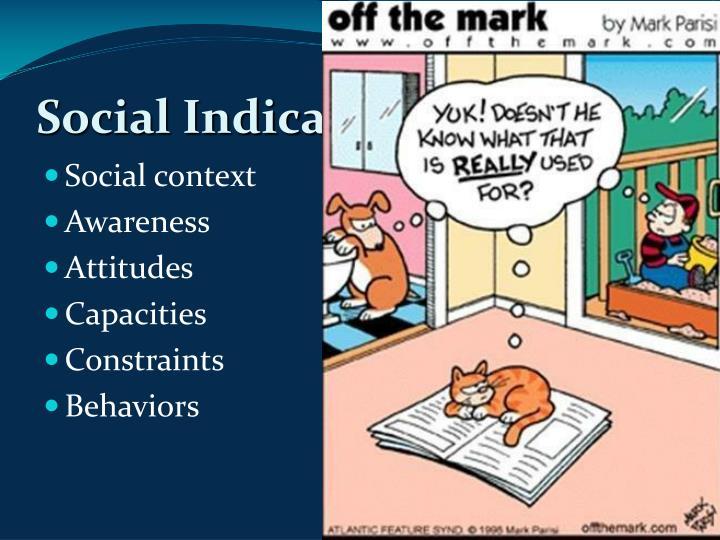 Social Indicators Surveys
