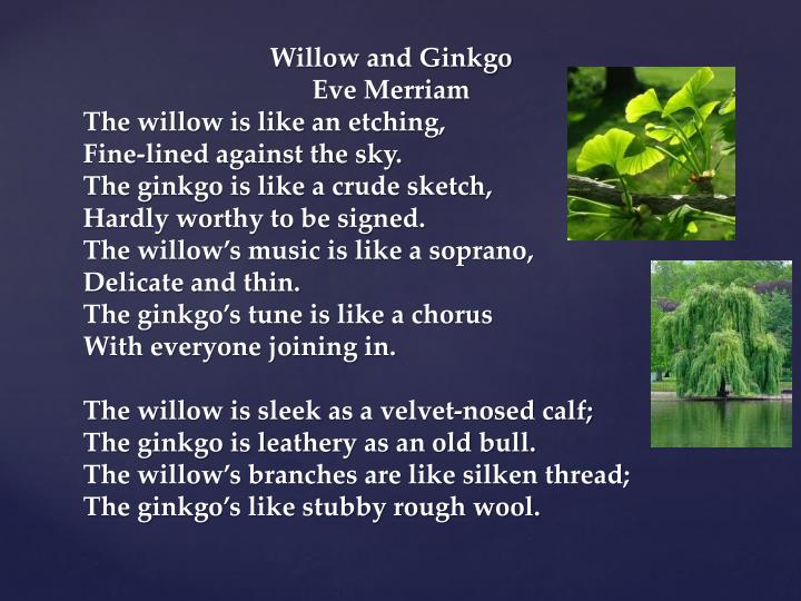 Willow and Ginkgo