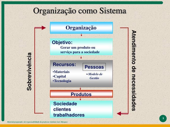 Organiza o como sistema
