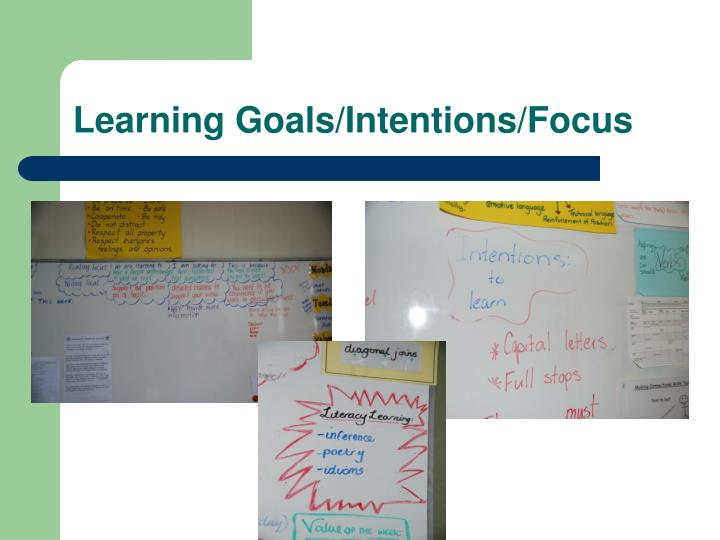 Learning Goals/Intentions/Focus