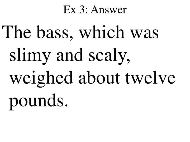 Ex 3: Answer