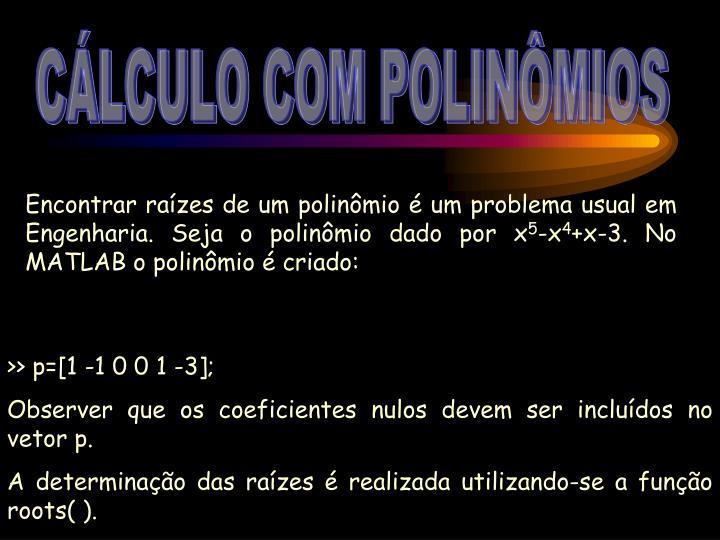 CÁLCULO COM POLINÔMIOS
