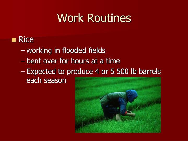 Work Routines