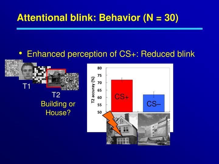 Attentional blink: Behavior (N = 30)