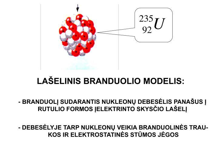 LAŠELINIS BRANDUOLIO MODELIS: