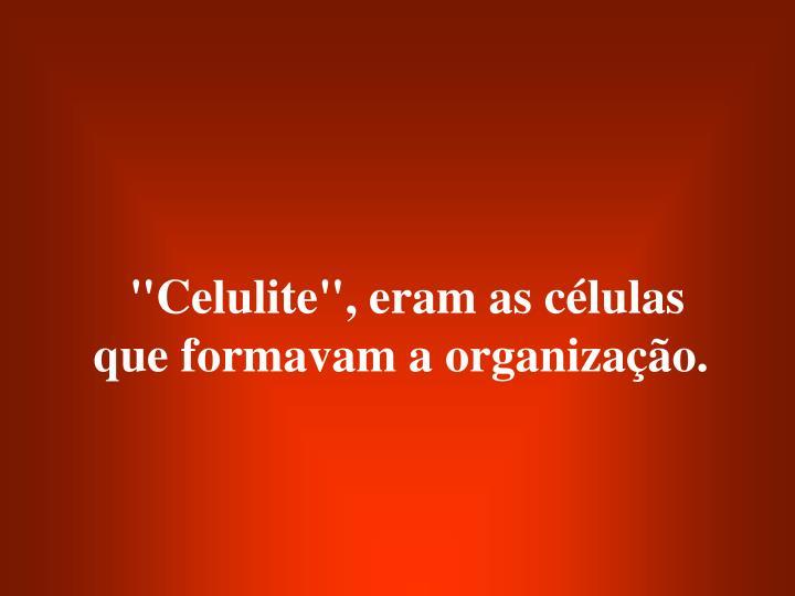"""""""Celulite"""", eram as células que formavam a organização."""