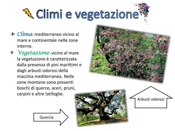 Climi e vegetazione