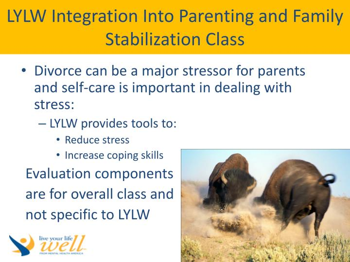 LYLW Integration Into Parenting and Family Stabilization Class