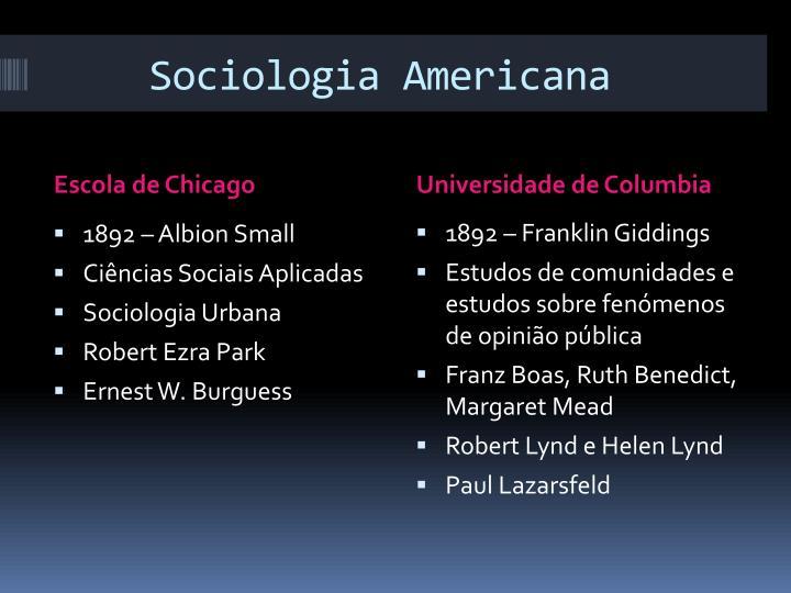 Sociologia Americana