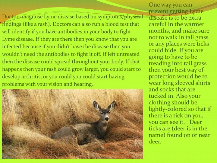 One way you can prevent getting Lyme disease is to be extra careful in the warmer months, and make s...
