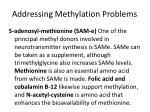 addressing methylation problems