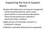 supporting the gut to support mood