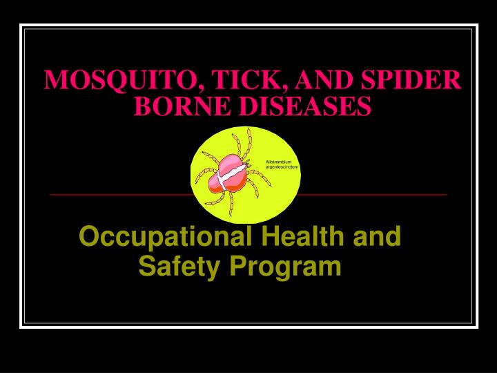 mosquito tick and spider borne diseases n.