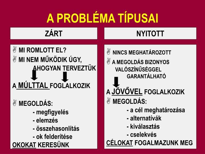 A PROBLÉMA TÍPUSAI