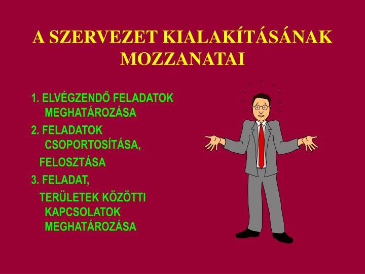 A SZERVEZET KIALAKÍTÁSÁNAK MOZZANATAI