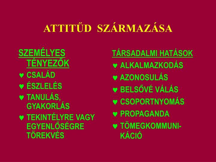SZEMÉLYES TÉNYEZ