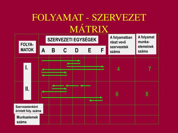 FOLYAMAT - SZERVEZET MÁTRIX