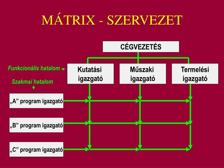 MÁTRIX - SZERVEZET