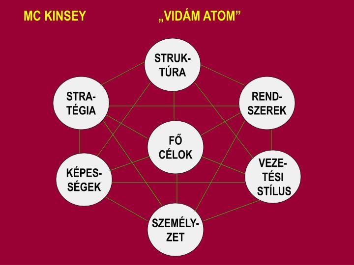 "MC KINSEY                       ""VIDÁM ATOM"""