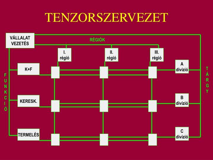 TENZORSZERVEZET