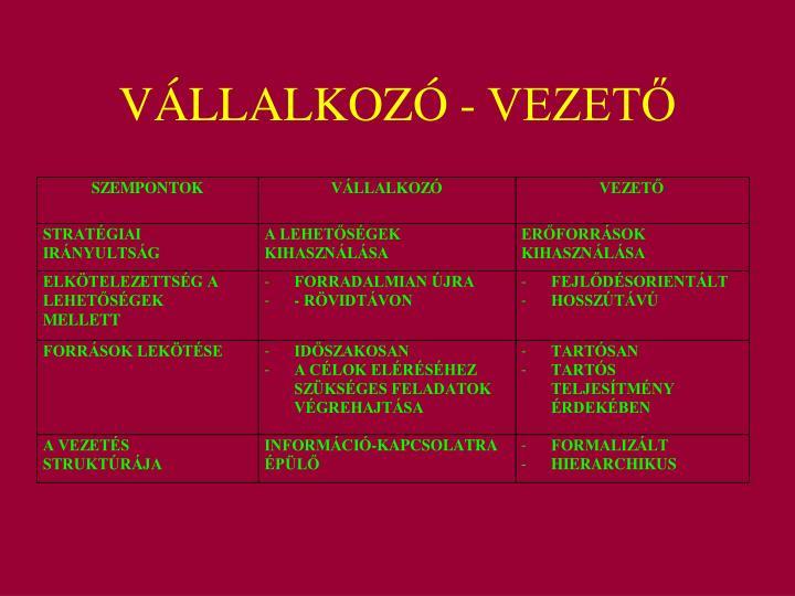 VÁLLALKOZÓ - VEZETŐ