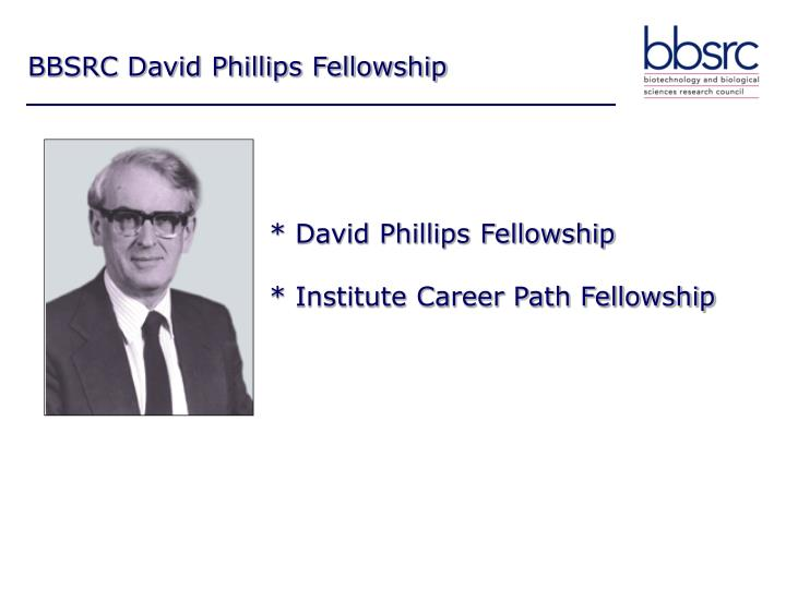 David phillips fellowship institute career path fellowship