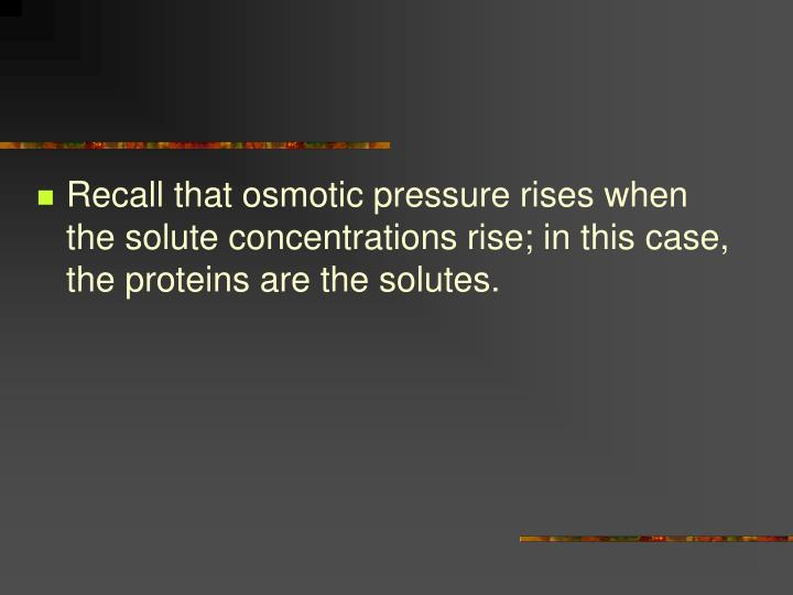 Recall that osmotic pressure rises when the solute concentrations rise; in this case, the proteins are the solutes.