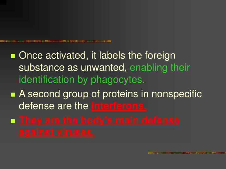 Once activated, it labels the foreign substance as unwanted,