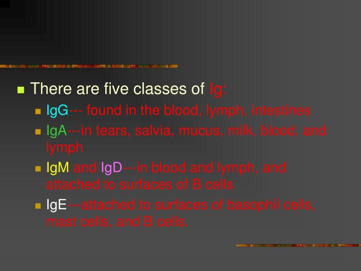 There are five classes of