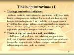 tinklo optimizavimas 1