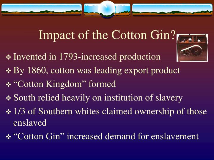 Impact of the Cotton Gin?