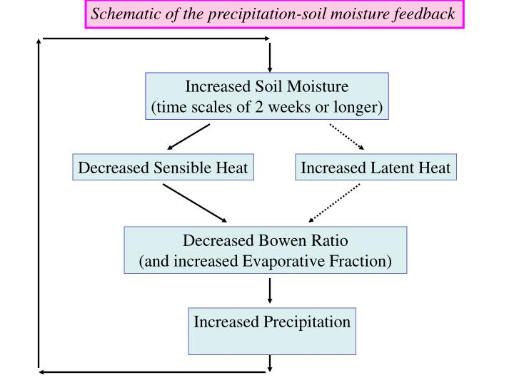 Schematic of the precipitation-soil moisture feedback