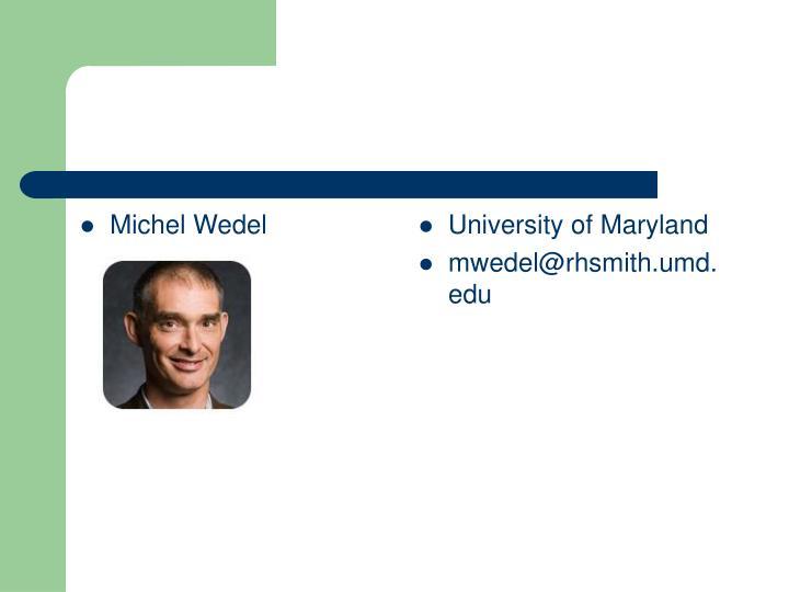 Michel Wedel