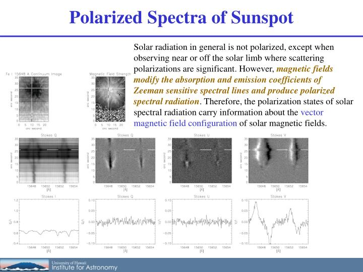 Polarized Spectra of Sunspot