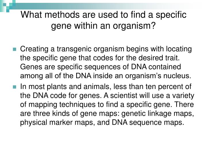What methods are used to find a specific gene within an organism?