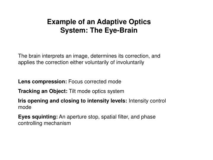 Example of an Adaptive Optics System: The Eye-Brain