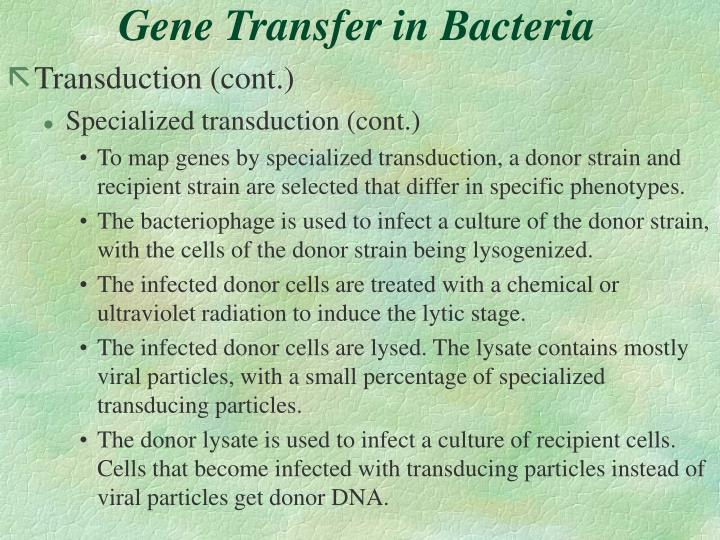 Gene Transfer in Bacteria