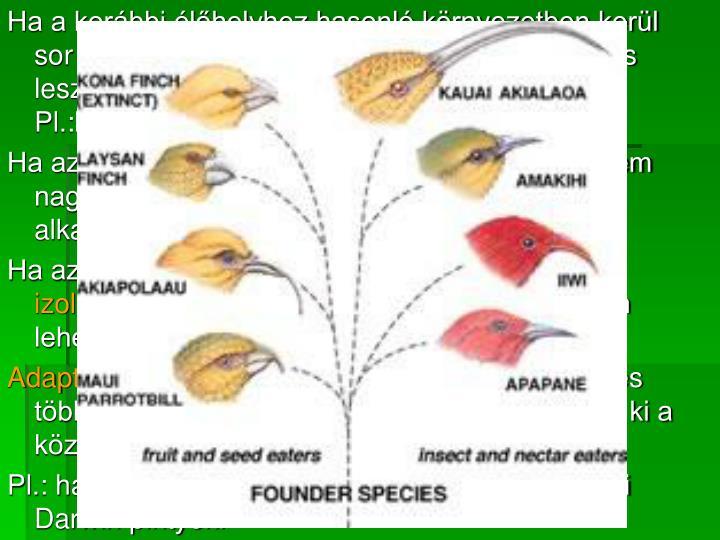 Ha a korábbi élőhelyhez hasonló környezetben kerül sor a megtelepedésre, akkor az gyors és sikeres lesz, és újabb szétterjedésnek lehet alapja. Pl.:balkáni gerle